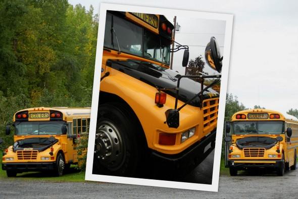 Les bus jaunes