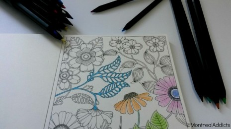 coloriage pour adulte Secret garden jardin secret Johanna Basford - Blog Montreal Addicts