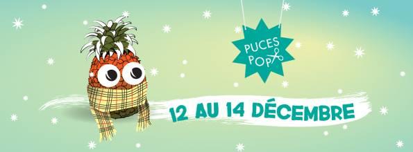 puces pop hiver 2014