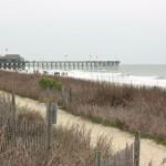 VOYAGE | La Caroline du Sud, entre plage et jardins