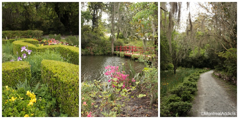 Magnolia plantation Charleston - Blog Montreal Addicts