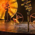 SORTIE | Luzia : le dernier spectacle flamboyant du Cirque du Soleil