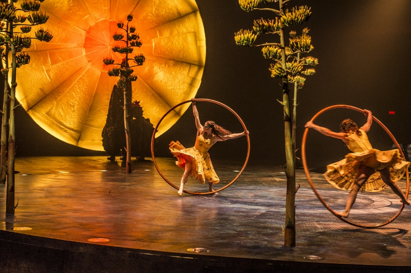 Cirque du Soleil - Opinion sur Luzia | Blog Montreal Addicts
