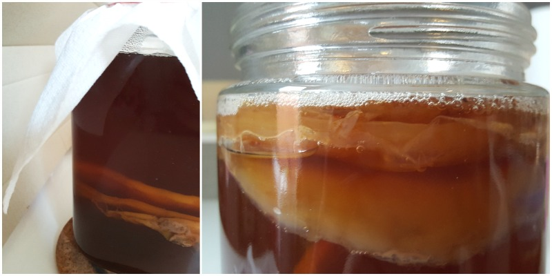 faire_son_kombucha_maison_recette_facile-blog_montreal_addicts