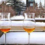 SORTIES | Cueillir des pommes dans les vergers québécois cet hiver