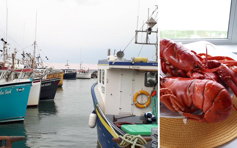 iles-de-la-madeleine-homards