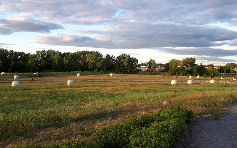 Les boules extra-terrestres du parc Frédéric Back