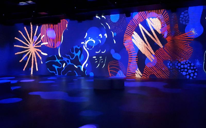 Exposition immersive formes abstraites colorées