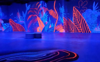 Exposition immersive Montréal