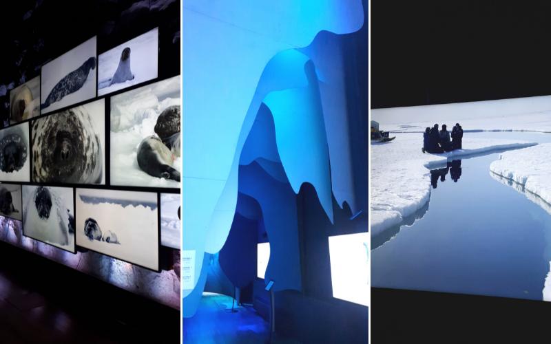 Expo immersive sous les glaces