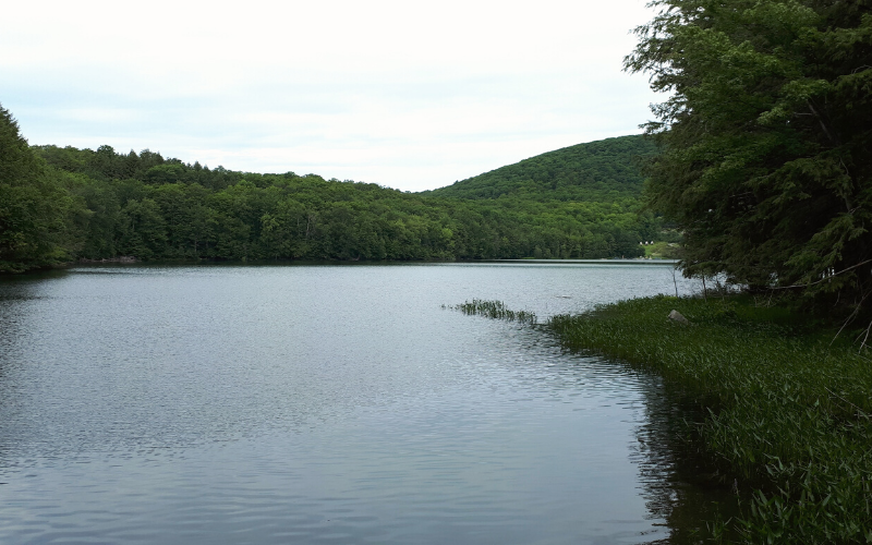 Lac Gale - Parc des sommets